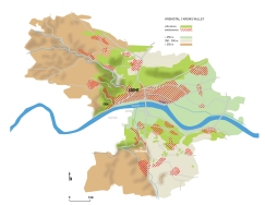 spatial structures_topography and settlements in the eastern region of Wachau
